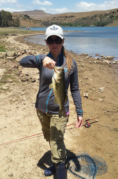 Nice bass on a crank