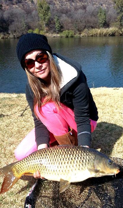 Nice fat river carp