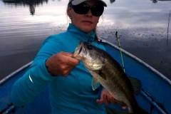 Another decent afternoon bass caught