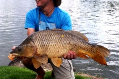 Martin's monster, and the biggest carp of the weekend