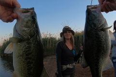 Martin and I managed to get hooked up at the same time, I think my bass was the bigger one...