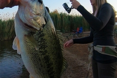 I caught this nice little bass in front of our chalet at Rietvlei Dam