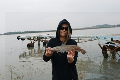 Baby barbel for me