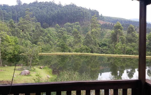 bass dam view