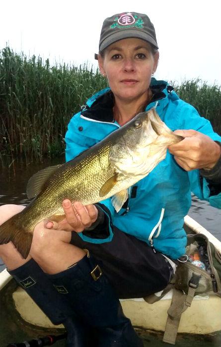 decent bass