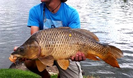 La Retraite – Vaal River – Feb 2018