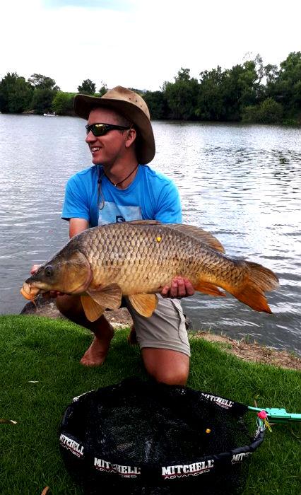 massive carp