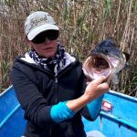 beacon vlei monster bass