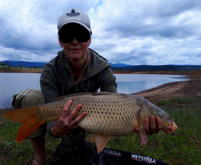 Fish Eagle's Lair – Albert Falls Dam – Nov 2017