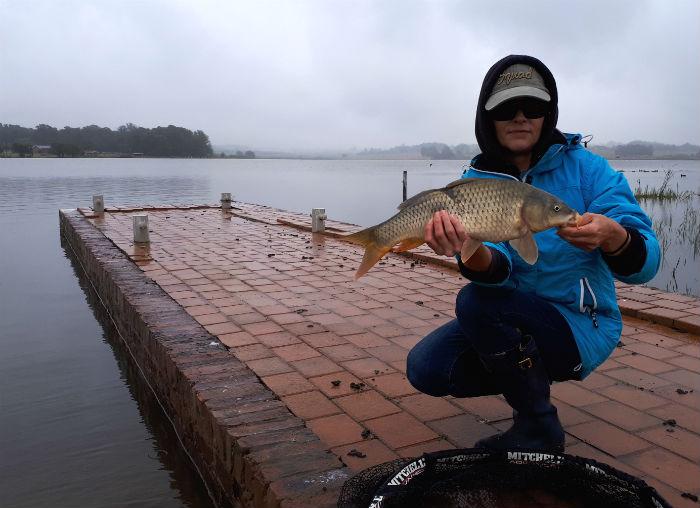 witbank dam smaller carp