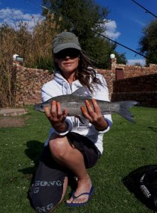 Oppiwalle – Vaal River – Jun 2018