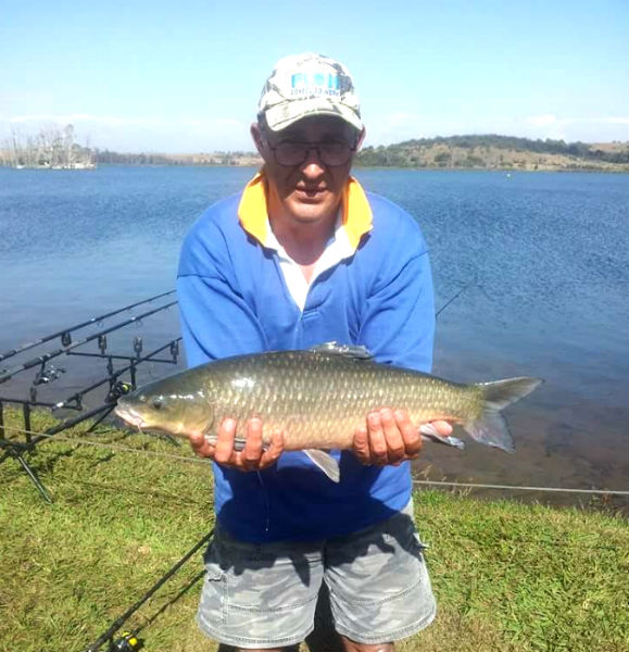 rietvlei dam yellowfish