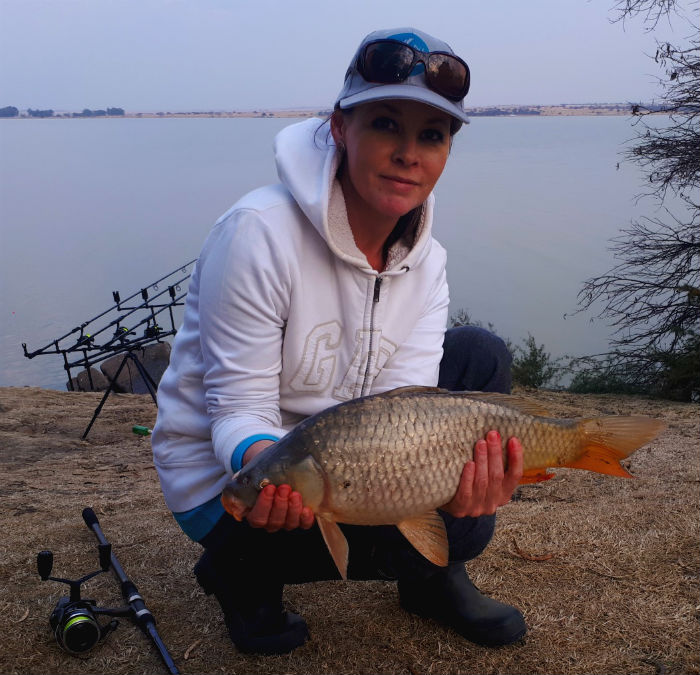 koppies dam nature reserve carp