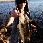 rietvlei dam bass fishing