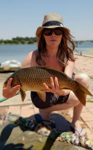 witbank dam another nice size carp