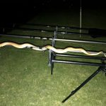 riverside lodge loskop dam snake 2