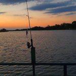 komati river tiger fishing