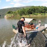 komati river fun on the weir 2